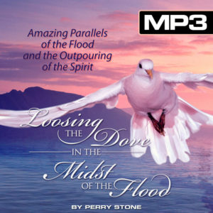 DLCD024 MP3 Loosing the Dove in the Midst of the Storm-0